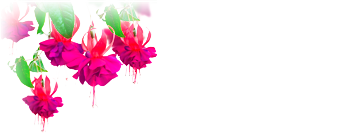 Dingle Linens logo